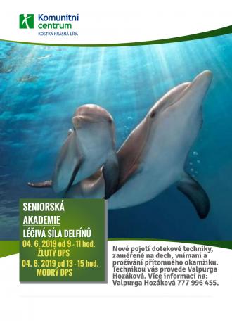 Seniorská akademie - Léčivá síla delfínů